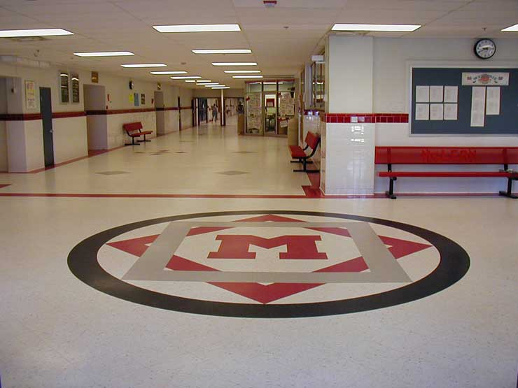 Picture of Mclean High School